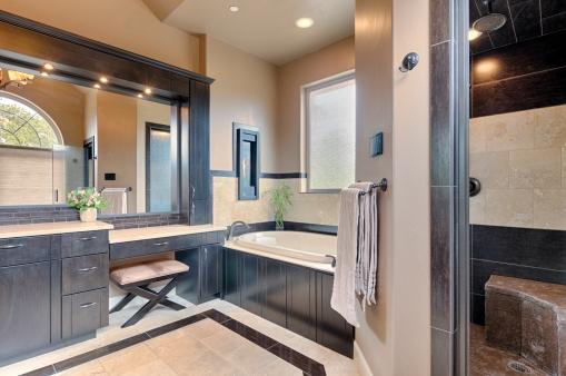 Master Bath Steam Shower and Tub
